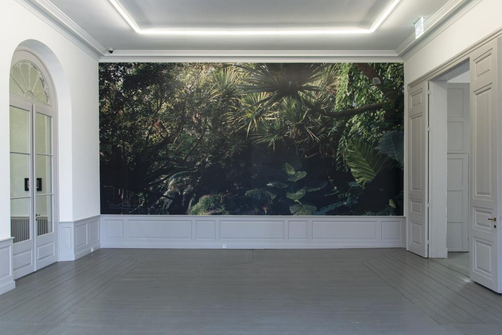 Installation view, <i>Post Tropical</i>, Museum Kurhaus Kleve, 2019
