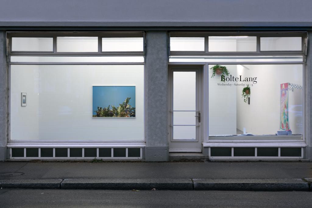 Installation view Talisa Lallai <i>Lento Violento</i>, 2017