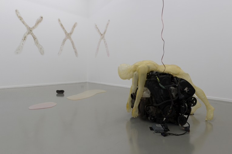 Installation view <i>Dear Life</i>, 2017, Centre Culturel Suisse, Paris, FR